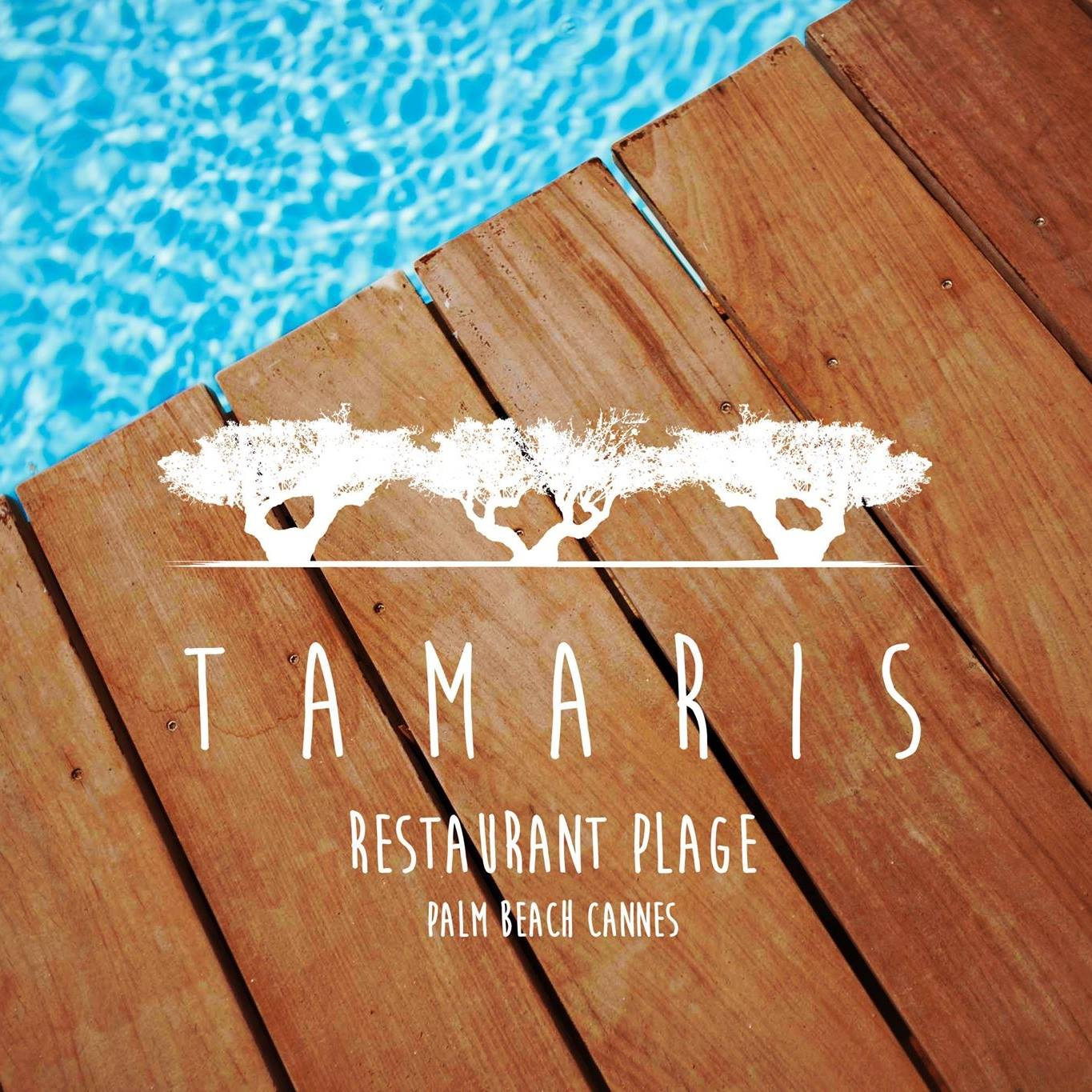 opening tamaris plage au palm beach cannes, soiree dj, plage chic
